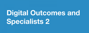 Digital outcomes and specialists 2