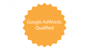 Google Certification logo