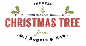 real christmas tree graphic design
